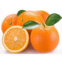Yafa Portakalı